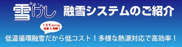 yukikesi001